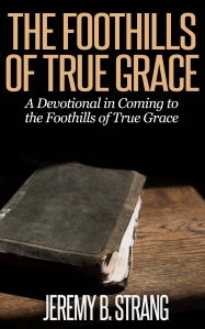Foothills of True Grace Cover Idea 7.18.2014