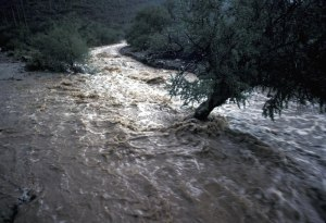 flood rushing water
